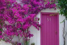 punchy front doors / by Jessica Birardi