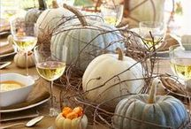 Holidays ~ Autumn / by Patricia Boyd
