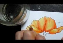 Art Tutorials for Colored Pencils / by Patricia Boyd