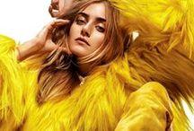 Fashion photography - Studio / by Linda Skaret