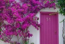 ··⊱ knock knock / by ᶫᵒᵛᵉᵧₒᵤ  ~ Julia