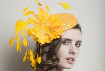 ··⊱ fascinator  / ~~ the fascinator, a younger, more modern version of a hat ... high society and such ~~ / by ᶫᵒᵛᵉᵧₒᵤ  ~ Julia