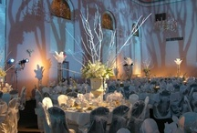 Eventful / by Cincinnati Ballet