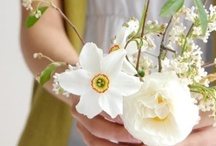 Spring time! / by Botanical Bird  Jewelry