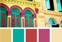 Color Palette / by Carla Bennett