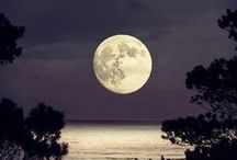 Lunar Lunatic / by Preeti Nand