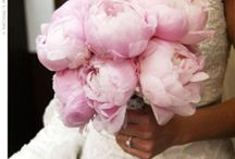 WEDDING BOUQUETS / by Terri Morgan