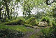 The Secret Garden... / by Madeleine