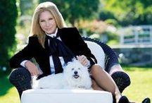 Barbra Streisand  / From beginning to present / by Linda Hudgins
