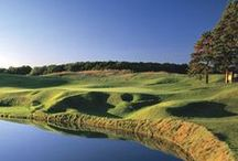 Greater Lansing Golf / by Greater Lansing Convention and Visitors Bureau