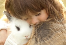 Bunny Rabbits / by Diana Lincoln Kupferer