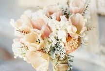 Wedding Stuff!! :) / Starting to plan our wedding! Love looking for neat ideas!  / by Kimberly Whitley