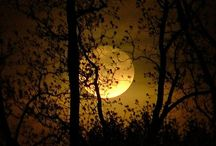 La Luna / La Luna e Bella . Enjoy , but please be a polite pinner. Bless . Thank you. / by Lisa Abramson