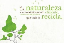 """Conciencia medioambiental / """"El gran desafío de hoy en día es salvar el medio ambiente y las condiciones para que se mantenga la vida en la Tierra; para ello necesitamos a los filósofos y a la filosofía"""" Jostein Gaarder.   """"Salvaguardar el medio ambiente.... Es un principio rector de todo nuestro trabajo en el apoyo del desarrollo sostenible; es un componente esencial en la erradicación de la pobreza y uno de los cimientos de la paz"""" Kofi Annan. / by María Rodríguez Reyes"""