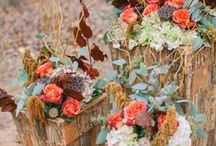 Fall Weddings / Fall wedding ideas for the perfect autumn celebration. Follow this board for all things fall! / by Project Wedding