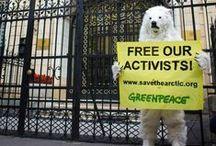 Rusya: Arctic Sunrise mürettebatını hemen serbest bırak! / 32 ülkede, yüzlerce Greenpeace eylemcisi, Rusya Elçiliklerinin önüne giderek, barışçıl eylemcilerimizin haksız yere silahlı güçler tarafından gözaltında tutulmasını protesto etti.   Gönüllümüz Gizem'in de aralarında bulunduğu barışçıl eylemcilerimizin serbest bırakılması için, sen de destek ver>> http://greenpeace.org/freeouractivists #FreeTheArctic30 #SaveTheArctic / by Greenpeace Türkiye
