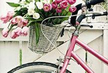 Bikes / Pretty bikes with flowers. / by Loribeth Clark