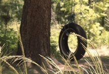 ♪♫ life is just a tire swing ♪ / ....Life is still a tire swing, Jambalaya is the best song I can sing, blackberry picking, eating fried chicken, though, I finally learned a lot about pain, life is just a tire swing ~ JIMMY BUFFETT / by Patricia Faye