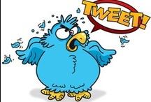 Twitter  / Immagini divertenti dell'uccellino più famoso.  / by Cristina Simone