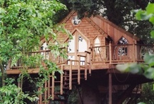 Tree Houses / by Anne Maree Connick