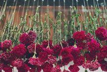 Wedding / by Caitlyn Cagle