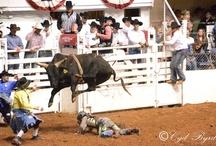 Rodeo / by Cyd Byrd