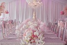 Wedding Reception / by Kirsten McCamley