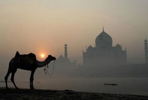 iridescent india / #india #travel / by Kristin D