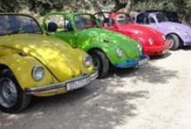 this & that... beetle love / by Dina Dudarevitch