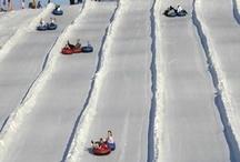 Tubing / by Pennsylvania Ski Areas Association