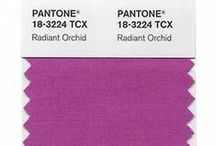 2014 Pantone Color: Radiant Orchid / by Alfred Angelo Bridal