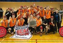 Champions / Gold, silver, bronze - and Hamilton, Ontario proud of our winning teams and athletes. / by HamiltonScores