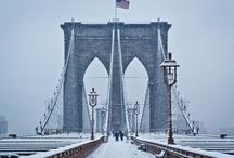 New York, New York / by Rose