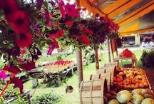 Farmers' Markets Are Amazing / by Rebekah Bennett