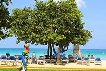 Negril, Jamaica / Photography from Negril, Jamaica - famous for the Seven-Mile Beach / by Grand Pineapple