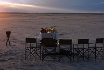 Favorite Places & Spaces / by Africa Adventure Consultants