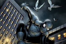 Spider-man Geek / I am no Spidey expert, but I do love him. Wrote a Spider-man fandom novel, Fly on the Wall: How One Girl Saw Everything. Here are my fave images. / by E. Lockhart