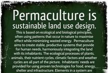 Permaculture / by Kresha @ Nourishing Joy