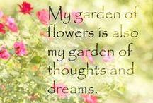 garden dreams / by Marcia Myers-Knoles