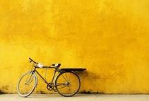 Bicycles I Love / by Maya