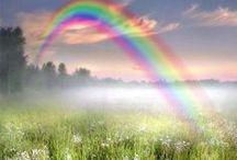 Ꭶt. Ƥatrick's Ɗay ღ / Green, Leprachauns, Rainbows, Four-leaf Clovers, Food, Fun & Magic! / by ∙✿⊱৲ ℋoℓℓy Ꭿnn