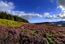 The Garden of Ireland: County Wicklow / Guest Guilherme Padilha shares his spectacular photos capturing the true beauty of County Wicklow on the CW Self-Guided tour. This tour departs April-October from Dublin, 5-10 miles per day on easy to moderate terrain. / by Country Walkers