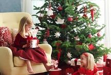 *Everyday Seasons: Christmas  / Deck the halls....and walls, and mantles and tables and.... / by The Everyday Home