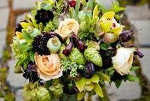 Wedding / by Jacqueline Exline