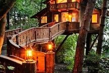 Terrific Treehouses / by Jennifer Reed