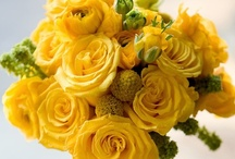 Yellow things. / by Wendi Dunlap