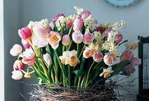 Flowers, bouquets, floral arrangements / by Cristina Pintado