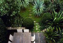 Home // Garden / by Fonda LaShay