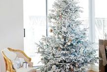 Christmas This & That / by Luci @Bungalow Home Staging & Redesign