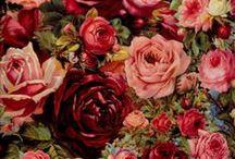 ~Bloemen~Schilderijen~Plaatjes~ / by Inge Geboers